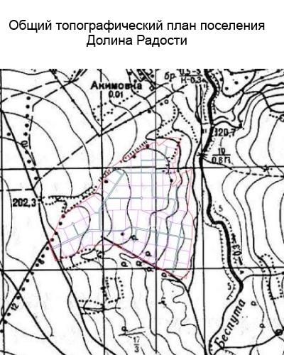 общий топографический план района